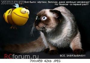 Нажмите на изображение для увеличения Название: пчелка1.jpg Просмотров: 34 Размер:41.7 Кб ID:3064353