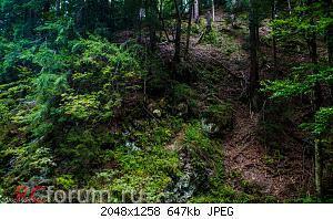 Нажмите на изображение для увеличения Название: ЖЕНЕЦЬКИЙ ГУК-29.jpg Просмотров: 18 Размер:647.0 Кб ID:5021271