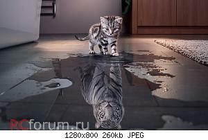Нажмите на изображение для увеличения Название: nastol.com.ua-214417.jpg Просмотров: 20 Размер:260.1 Кб ID:5486187